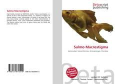 Bookcover of Salmo Macrostigma