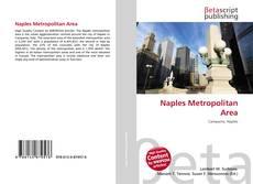 Couverture de Naples Metropolitan Area
