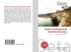 Borítókép a  Naples Underground Geothermal Zone - hoz