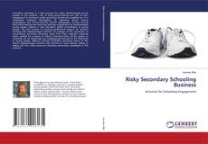 Bookcover of Risky Secondary Schooling Business