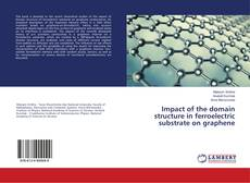 Bookcover of Impact of the domain structure in ferroelectric substrate on graphene
