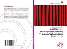 Bookcover of David Belasco