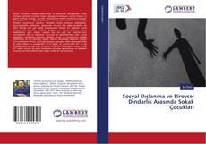 Sosyal Dışlanma ve Bireysel Dindarlık Arasında Sokak Çocukları kitap kapağı