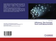 Bookcover of Efficiency: The Concept, Form and Measurement
