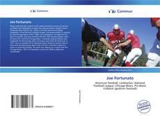 Buchcover von Joe Fortunato
