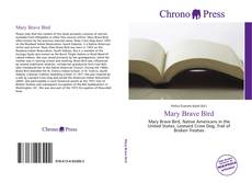 Bookcover of Mary Brave Bird