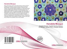 Bookcover of Hanabila Mosque