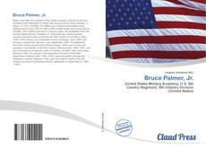 Capa do livro de Bruce Palmer, Jr.