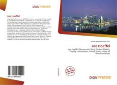 Bookcover of Joe Hoeffel