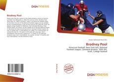 Borítókép a  Brodney Pool - hoz