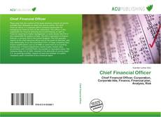 Bookcover of Chief Financial Officer