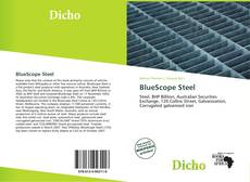 Bookcover of BlueScope Steel