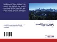 Bookcover of Natural Fibre Composite Wear Behaviour