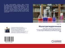 Bookcover of Малатдегидрогеназа