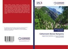 Bookcover of Cehennem Deresi Kanyonu