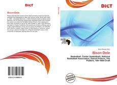 Bison Dele kitap kapağı