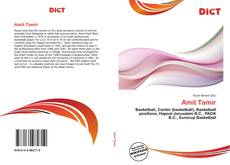 Bookcover of Amit Tamir