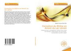 Bookcover of Correction du Rhône en Amont du Lac Léman