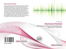 Bookcover of Hurricane Festival