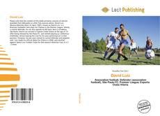 Bookcover of David Luiz
