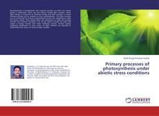 Bookcover of Primary processes of photosynthesis under abiotic stress conditions