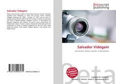 Salvador Videgain kitap kapağı