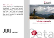 Borítókép a  Salvage Mountain - hoz