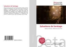 Buchcover von Salvatierra de Santiago