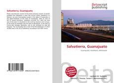 Bookcover of Salvatierra, Guanajuato