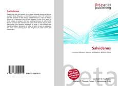 Borítókép a  Salvidenus - hoz