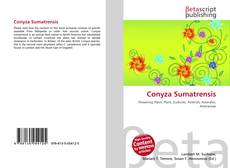 Conyza Sumatrensis的封面