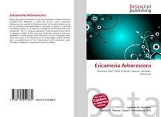 Bookcover of Ericameria Arborescens