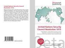 Buchcover von United Nations Security Council Resolution 1013