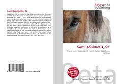 Capa do livro de Sam Boulmetis, Sr.