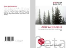 Bookcover of Abies Guatemalensis