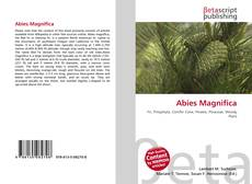 Bookcover of Abies Magnifica