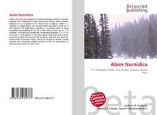 Bookcover of Abies Numidica
