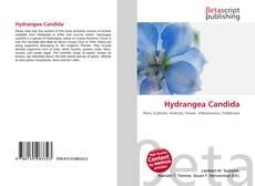 Bookcover of Hydrangea Candida