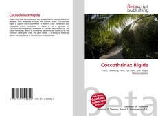 Buchcover von Coccothrinax Rigida