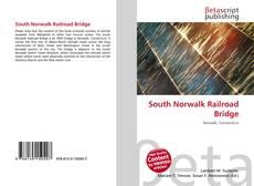 South Norwalk Railroad Bridge kitap kapağı