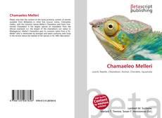 Buchcover von Chamaeleo Melleri