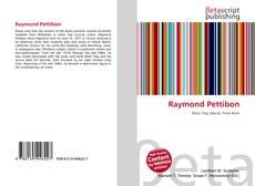 Bookcover of Raymond Pettibon