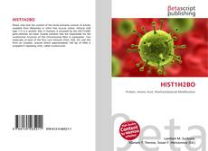 Bookcover of HIST1H2BO