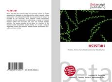 Bookcover of HS3ST3B1