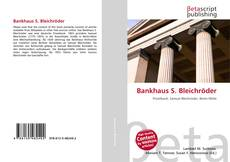 Bankhaus S. Bleichröder kitap kapağı
