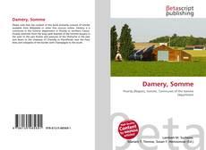 Buchcover von Damery, Somme