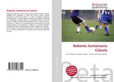 Borítókép a  Roberto Santamaría Calavia - hoz