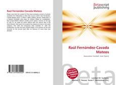Raúl Fernández-Cavada Mateos的封面