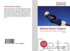 Bookcover of Roberto Román Triguero