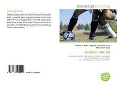 Godwin Antwi kitap kapağı